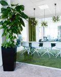 Inspirerande mötesrum med stor växt i förgrund